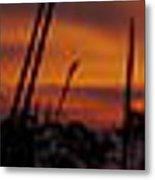 The Marsh At Sunset Metal Print