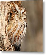 The Master Of Camouflage Metal Print