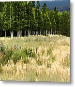 The Meadow Digital Art Metal Print