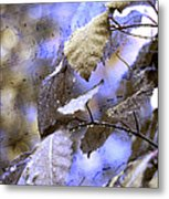 The Melody Of The Silver Rain Metal Print