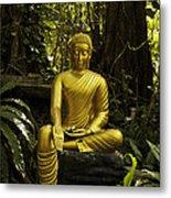 The Mercy Of Buddha Metal Print