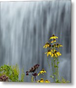 The Middle Falls II Metal Print