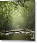 The Middle Prong River In Fog Metal Print