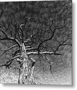 The Moon Tree Metal Print by Artist Orange