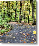 The Mount Vernon Trail. Metal Print