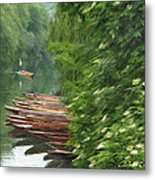 The Neckar River Metal Print