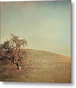 The Neverending Loneliness Metal Print