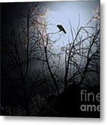 The Night The Raven Appeared In My Dream . 7d12631 Metal Print