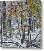 The October Blizzard Begins Metal Print