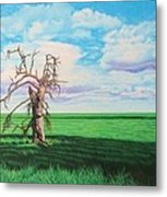 The Old Man On Green Valley Road Metal Print