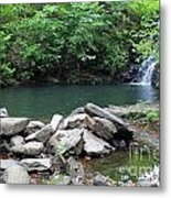 The Ole Swimming Hole Metal Print