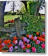 The Other Fence Metal Print