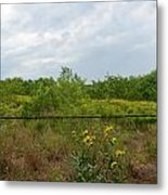 The Other Side Of The Fence Metal Print