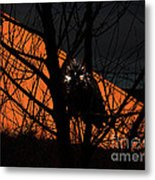 The Owl And The Old Ranch Metal Print