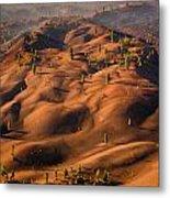 The Painted Dunes Metal Print