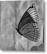 The Papillion Metal Print