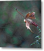 The Plot Thickens Metal Print