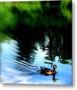 The Pond - Central Park Nyc Metal Print by Maria Scarfone