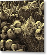 The Produce Of The Earth In Sepia Metal Print