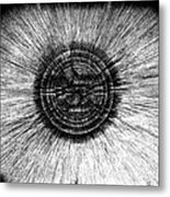 The Pupil Of The Eye Metal Print