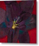 The Purple Lily Metal Print