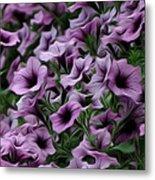 The Purple Sea Metal Print