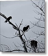 The Raven Tree Metal Print
