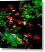 The Red Path Metal Print