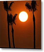 The Red Sunset  Metal Print