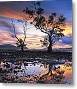 The Reflex Of Tree In Sunset Metal Print by Arthit Somsakul