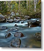 The River Wild Metal Print