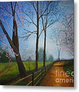 The Road Less Traveled Metal Print by Terri Maddin-Miller