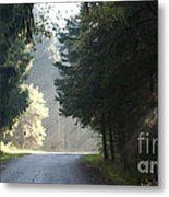 The Road Out Of The Conservation Area Metal Print