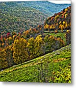 The Road To Glady Wv Painted Metal Print