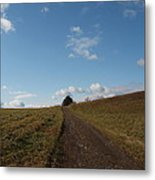 The Road To Nowhere Metal Print by Robert Margetts