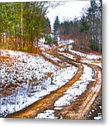 The Road To Spring Metal Print