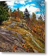 The Rocks Above Eagle Bay Metal Print