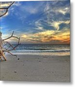 The Root Of Sunshine Metal Print