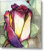 The Rose Metal Print by Nora Blansett