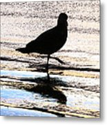 The Royal Society For Protection Of Birds Metal Print