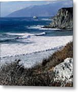 The Sea Squirrel Metal Print