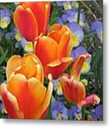 The Secret Life Of Tulips - 2 Metal Print