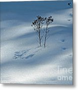 The Shadow Of Loneliness Metal Print