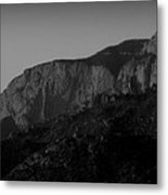 The Shield And Needle Black And White Metal Print