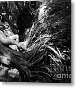 The Silent Place Metal Print