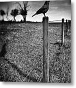 The Silent Warn  Metal Print