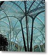 The Spiders Web Metal Print