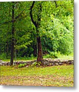 The Stone Wall Before The Cabin Metal Print