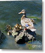 The Swimming Lesson Metal Print