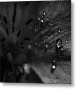 The Tears Have All Been Shed Metal Print